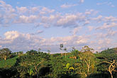 night scene stock photography | Belize, Cayo District, Evening light over rainforest, image id 6-94-14
