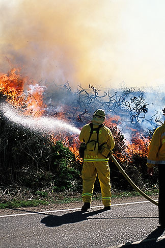 image 0-470-48 California, Marin County, Brush Fire, Marin Headlands, GGNRA