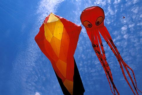 image 0-501-9 California, Berkeley, Berkeley Kite Festival