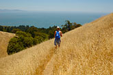 hillside stock photography | California, Marin County, Mount Tamalpais State Park, hiker, Coastal Trail, image id 1-870-2597