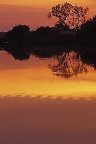 image 3-353-12 California, Delta, Sunset on river