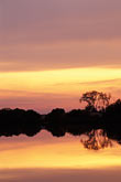 tree stock photography | California, Delta, Sunset on the Sacramento River, image id 3-353-14