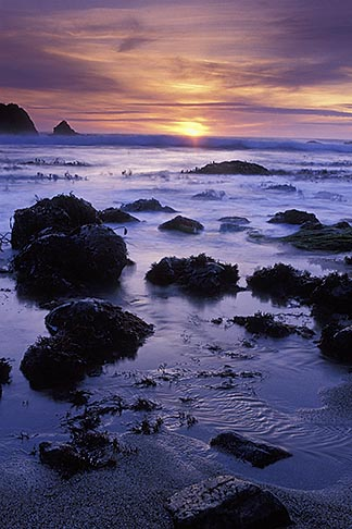 image 4-561-31 California, Bodega Bay, Sunset, Miwok Beach, Sonoma Coast Beach State Park
