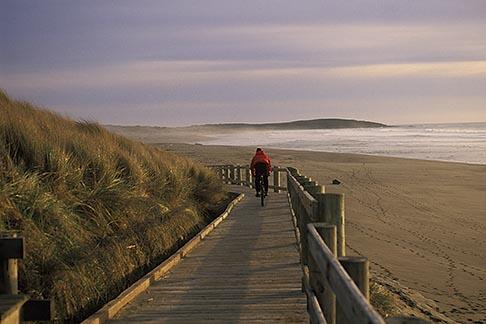 image 4-562-45 California, Bodega Bay, Boardwalk, Bodega Dunes