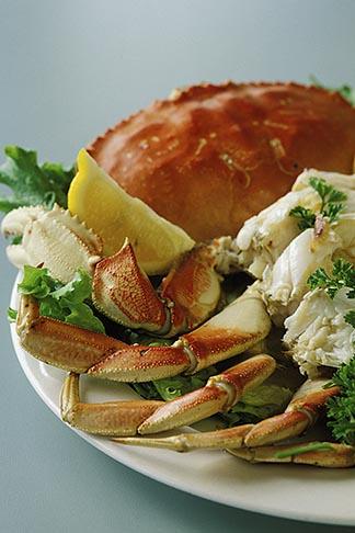 image 4-563-37 California, Bodega Bay, Dungeness crab