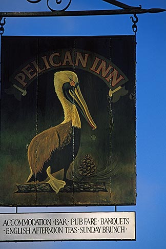 image 4-702-77 California, Marin County, Pelican Inn, Muir Beach