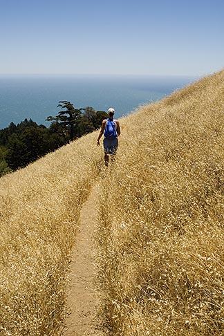 image 4-720-2598 California, Marin County, Mount Tamalpais State Park, hiker, Coastal Trail