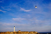 sunlight stock photography | California, Point Arena, Point Arena Lighthouse, image id 4-795-52