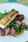 vertical stock photography | Food, Roasted halibut, lemongrass braised potatoes, purple cauliflower & pea shoots, image id 4-797-82