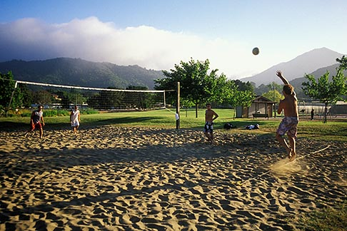image 4-840-42 California, Marin County, Larkspur, Volleyball in the park
