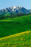 native plant stock photography | California, Mt Diablo, View of snow-capped Mt Diablo , image id 5-147-8
