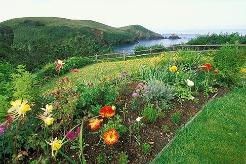 image 5-640-71 California, Mendocino County, Albion River Inn, flower garden