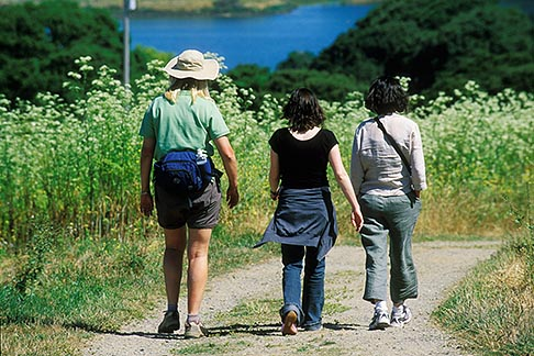 image 5-670-47 California, Moss Landing, Elkhorn Slough Reserve, Walking trail