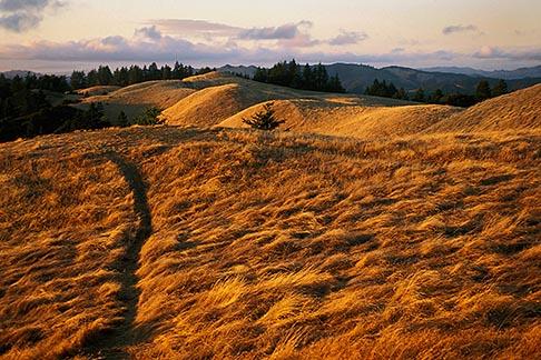 image 5-790-70 California, Marin County, Mount Tamalpais State Park
