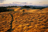 walking trail stock photography | California, Marin County, Mount Tamalpais State Park, image id 5-790-70