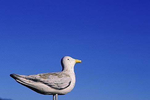 image 5-790-82 California, Wooden Seagull