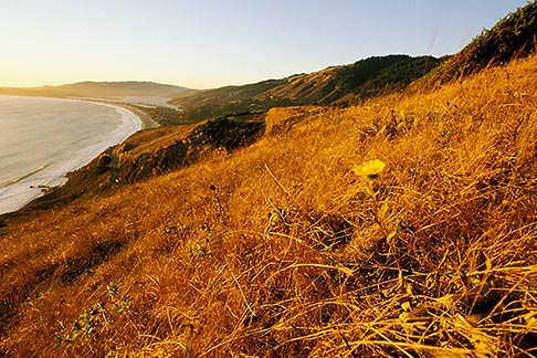 image 5-792-6 California, Stinson Beach, View from hillside at sunset