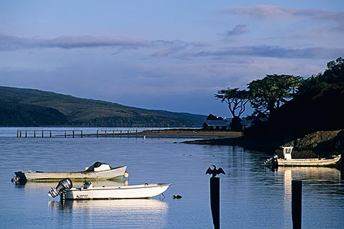 image 6-420-43 California, Tomales Bay, Boats on the Bay at Marshall