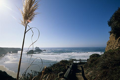 image 6-476-84 California, Big Sur, Sand Dollar Beach
