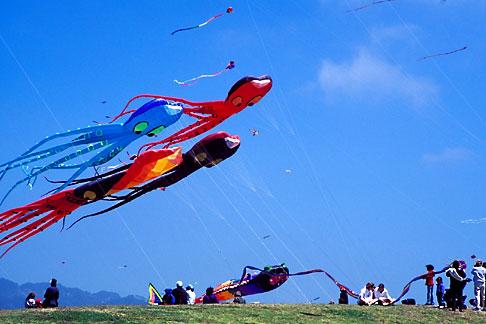 image S1-15-2 California, Berkeley, Kite Festival
