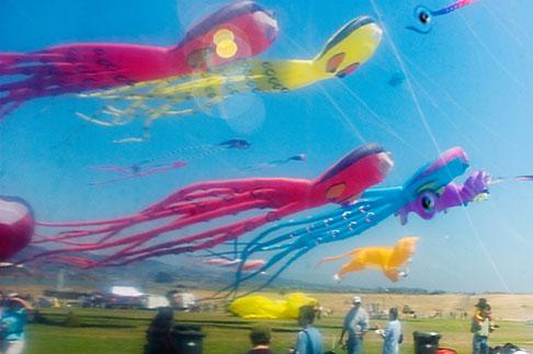 image S5-146-1466 California, Berkeley, Kite Festival in reflection