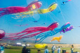 kite festival in reflection stock photography | California, Berkeley, Kite Festival in reflection, image id S5-146-1466