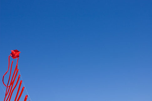image S5-146-1544 California, Berkeley, Kite Festival