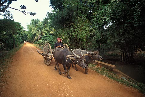 image 0-401-86 Cambodia, Siem Reap, On the road to Banteay Srei
