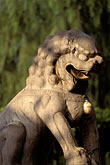 stone lion stock photography | China, Beijing, Carved marble lion, Beihai Park, image id 4-349-93