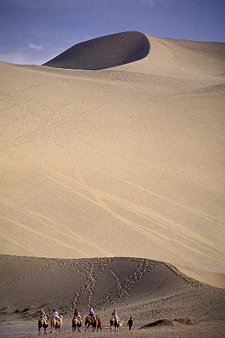 image 4-384-35 China, Dunhuang, Camel caravan, Mingsha sand dunes