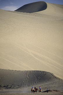 4-387-4  stock photo of China, Dunhuang, Camel caravan, Mingsha sand dunes