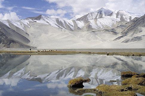 image 4-432-23 China, Pamirs, Sheep grazing by lakeside