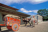 decorated oxcart stock photography | Costa Rica, San Jose, Pueblo Antiguo, image id 8-451-12