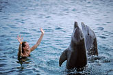 pet trick stock photography | Cura�ao, Willemstad, Dolphin Academy, Cura�ao Sea Aquarium, image id 3-432-18