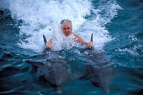 image 3-432-9 Curacao, Willemstad, Dolphin Academy, Curacao Sea Aquarium