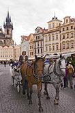 vertical stock photography | Czech Republic, Prague, Old Town Square, horse and carriage, image id 4-960-45