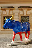 blue stock photography | Czech Republic, Prague, Painted cow, Prague Cowparade, image id 4-960-6461