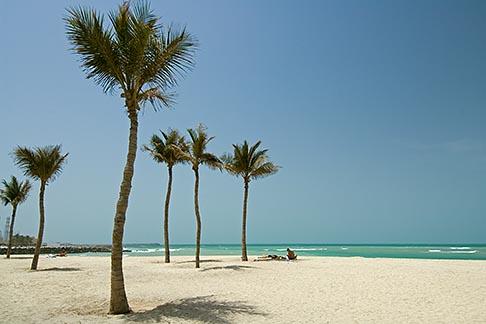 image 8-730-330 United Arab Emirates, Ajman, Beach and Palms, Arabian Gulf