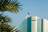 date palm stock photography | United Arab Emirates, Dubai, Jumeirah Beach Hotel, image id 8-730-9585