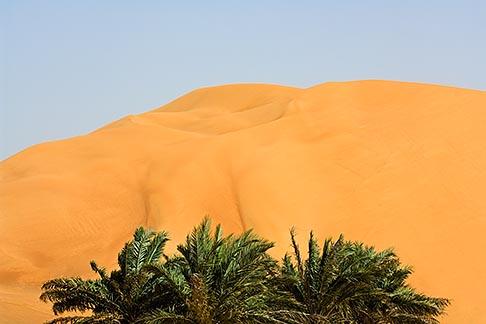 image 8-730-9753 United Arab Emirates, Abu Dhabi, Sand dunes and palms at desert oasis
