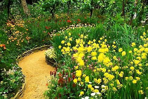 Image 3 752 19 England Chelsea Flower Show Bonterra Organic Wine Garden