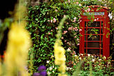 incongruous stock photography | England, Chelsea Flower Show, Yorkshire Forward Garden, Telephone booth, image id 3-754-9