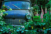 car stock photography | England, Chelsea Flower Show, The Mini Garden by Sulis Garden Design, image id 3-755-91