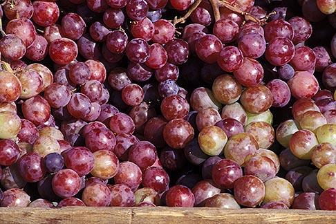 image 5-355-33 California, Benicia, Grapes, Farmers Market