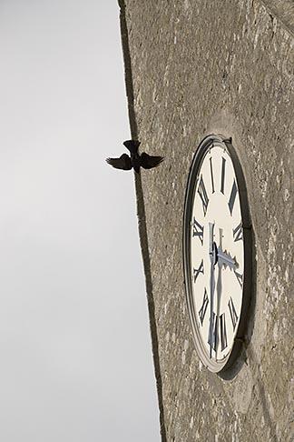 image 6-450-1091 France, Normandy, Sainte Mere ƒglise, Sainte Mere ƒglise church, clock