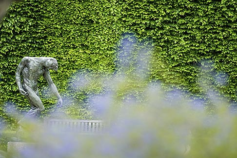 image 6-450-1275 France, Paris, Rodin Museum, Adam