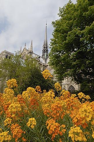 image 6-450-195 France, Paris, Cathedrale Notre Dame de Paris