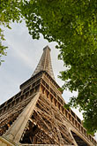 architecture stock photography | France, Paris, Eiffel Tower and trees, image id 6-450-365