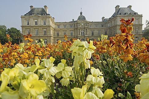 image 6-450-6221 France, Paris, Jardins des Luxembourg, Luxembourg Gardens