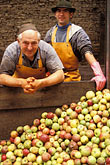 two people stock photography | Germany, Frankfurt, Applewine makers, image id 5-538-16